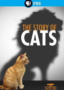 The Story of Cats - The Geological History of Wild Cats