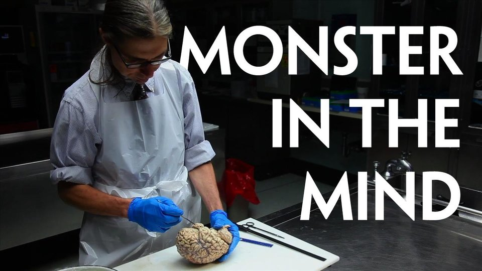Monster in the Mind (Abridged version)