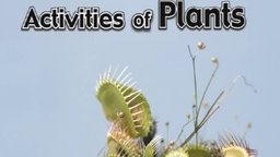 Activities of Plants