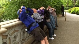Birders: The Central Park Effect