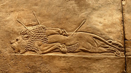 Neo-Assyrian Palace Reliefs