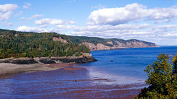 Bay of Fundy—Inexorable Cycle of Tides