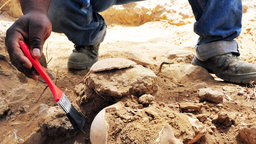 What and How Archaeology Reveals