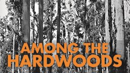 Among the Hardwoods - Logging in Western Australia in the 1920's