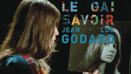 Le Gai Savoir - The Joy of Learning